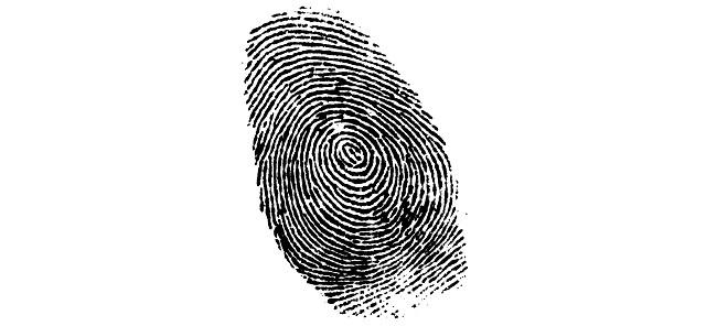 penal-investigacion-criminalistica1